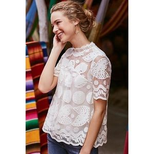 Anthropologie | Lemon Lily Lace